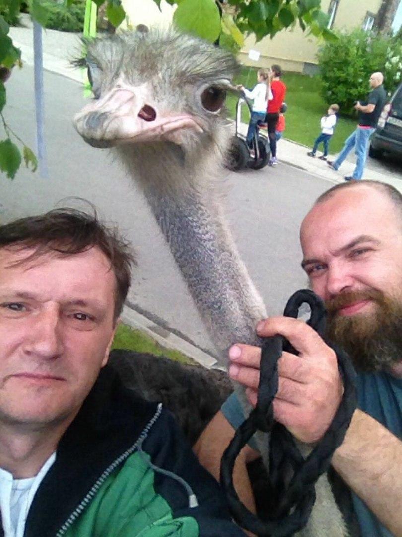 фотосессия со страусом!!