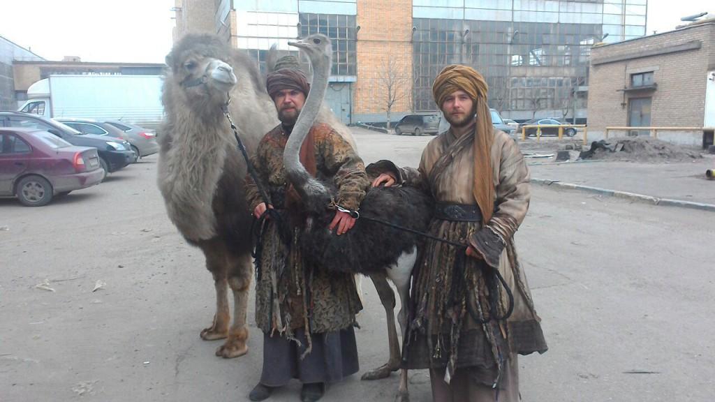 страус с верблюдом